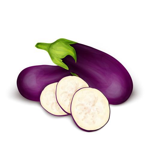 Eggplant aubergine isolated