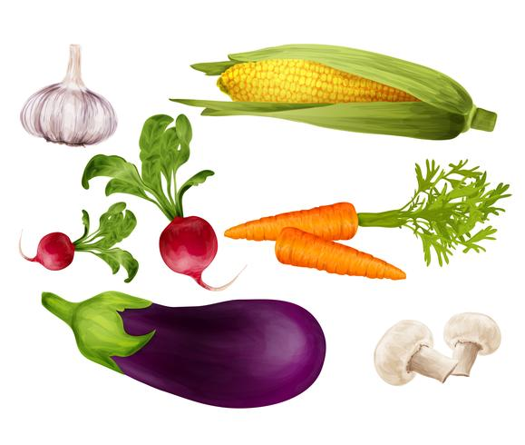 Vegetables realistic set vector