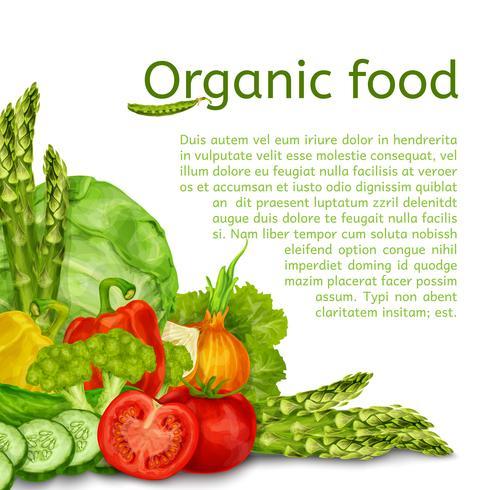 Fondo conjunto de verduras vector