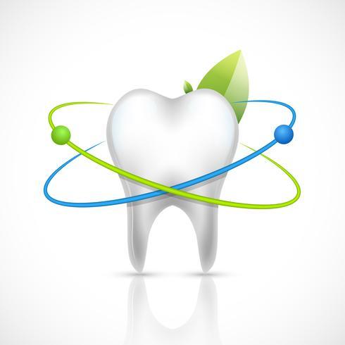 Dent saine réaliste