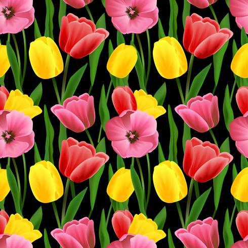 Fondo transparente de tulipán vector