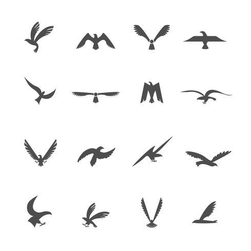 Set van adelaars