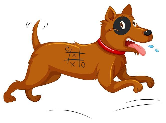 Hund mit bemaltem Körper läuft weg