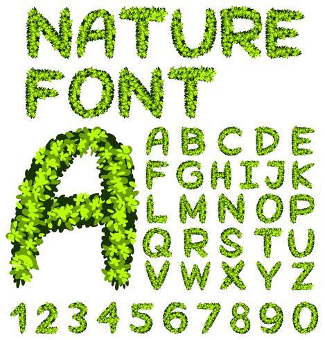 Diseño de fuentes para alfabetos y números en hojas verdes.