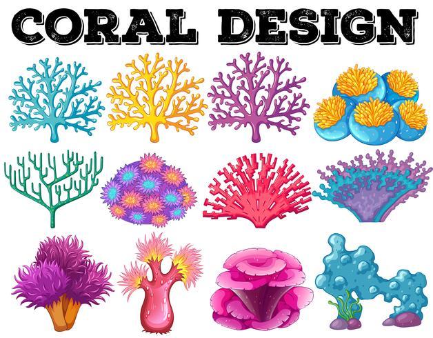 Diferentes tipos de diseño de coral.
