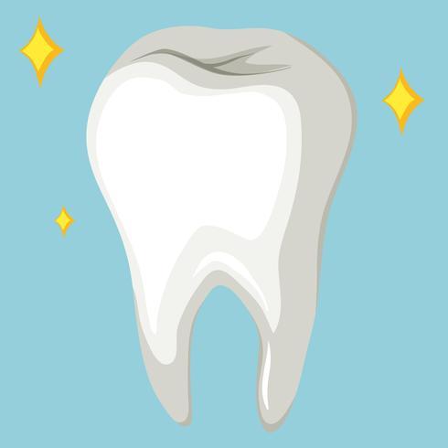 Único dente humano em fundo azul