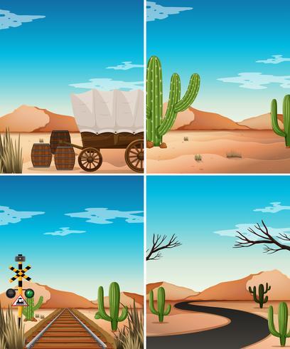 Quatro cenas no deserto com cactos no campo