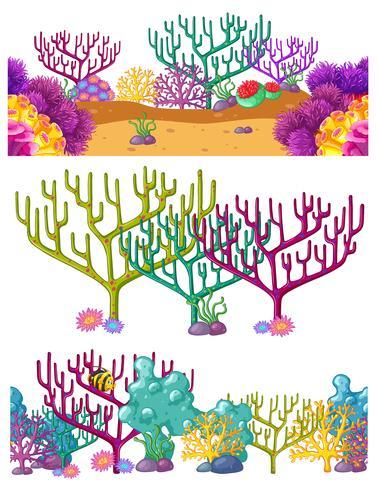 Tres escenas con arrecifes de coral bajo el agua.