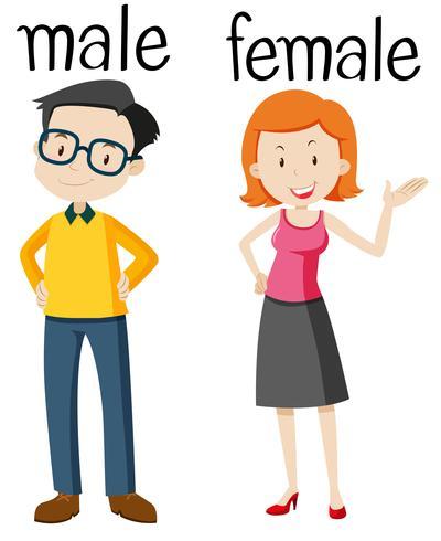 Tegenover woordkaart voor mannelijk en vrouwelijk