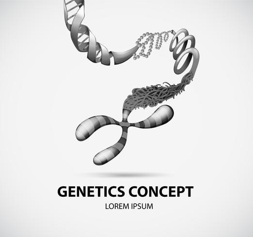 Concept génétique