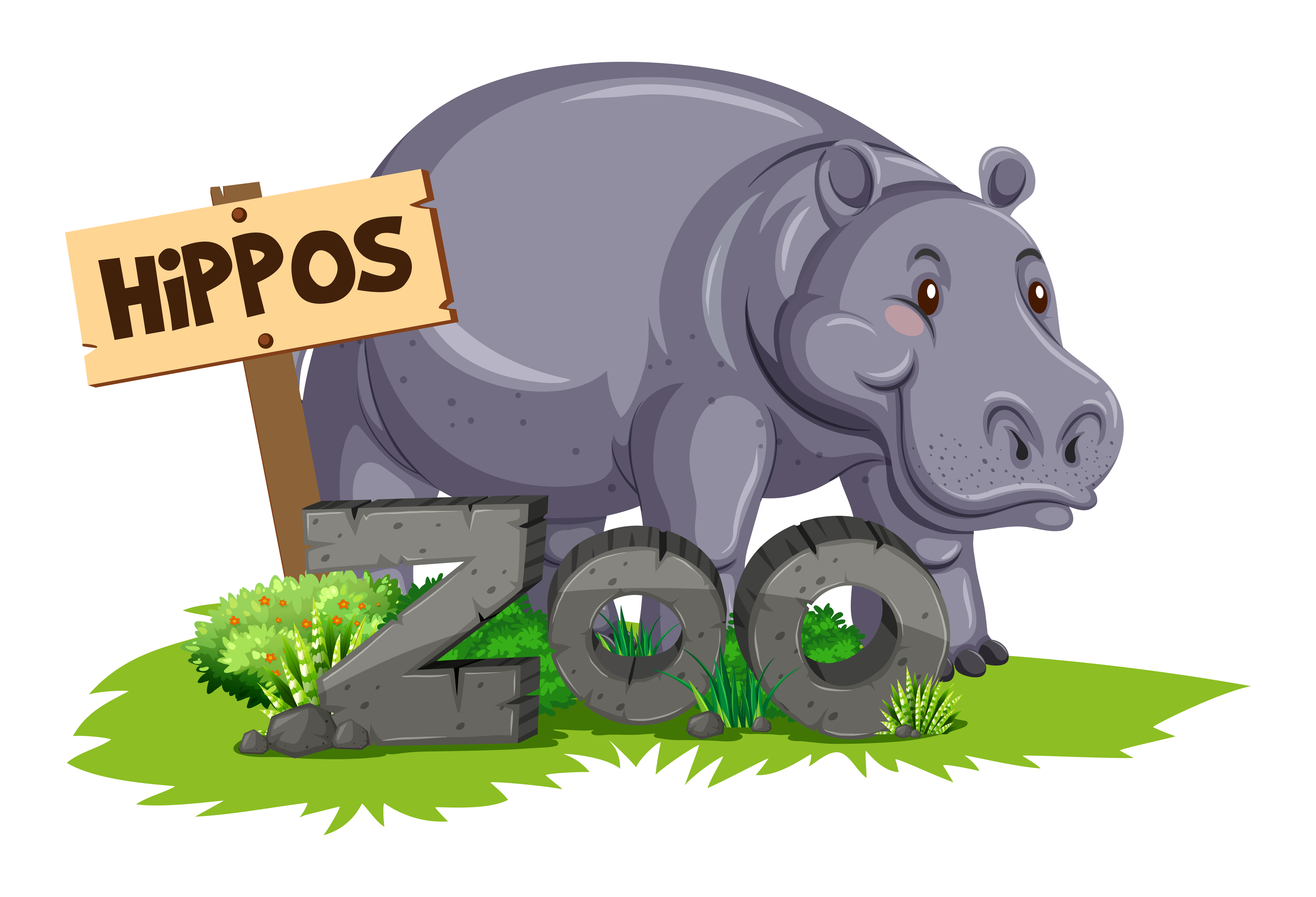 Wild hippo at the zoo - Download Free Vectors, Clipart ...