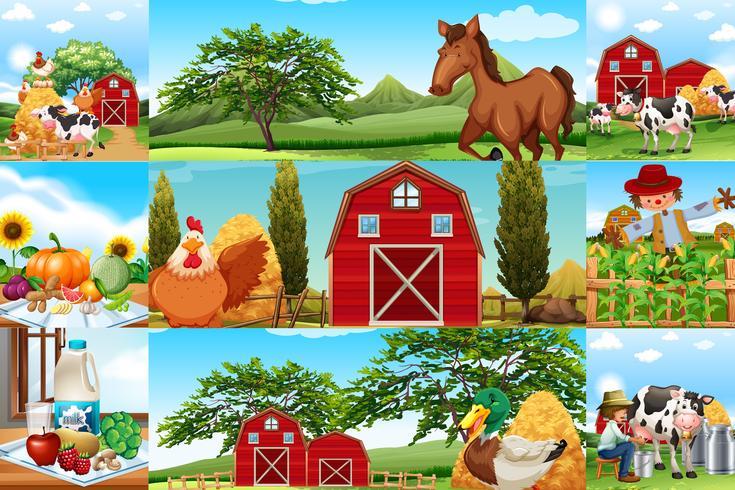 Cenas de fazenda com muitos animais e agricultores
