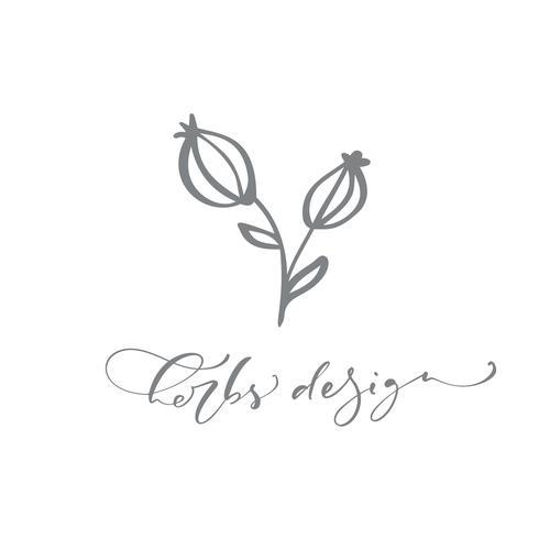 Kräuter Design Text. Vektor-modische skandinavische Blumenhand gezeichnetes Logo.