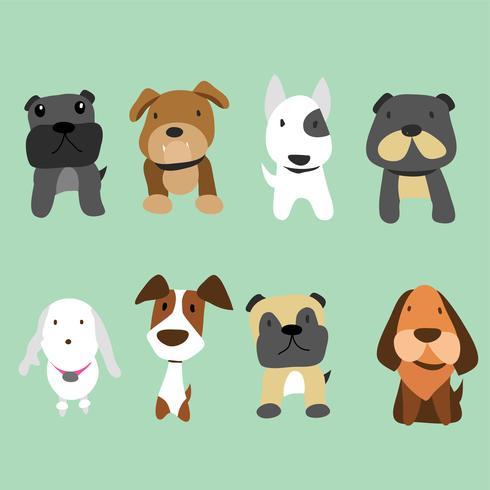 design de coleção de vetores de cães