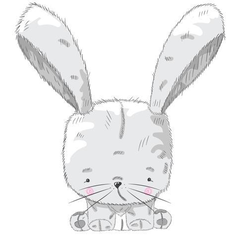 Little baby rabbit vector