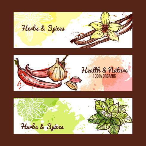Banners de ervas e especiarias