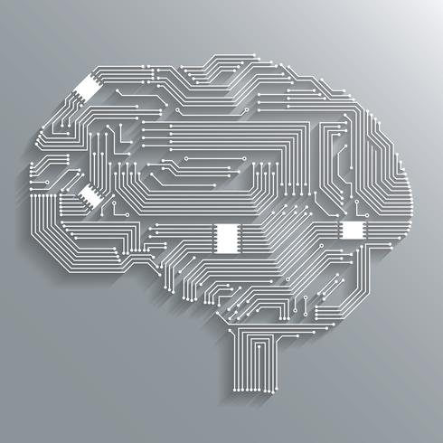 Cérebro placa de circuito