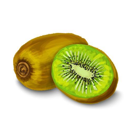 Kiwi aislado cartel o emblema vector
