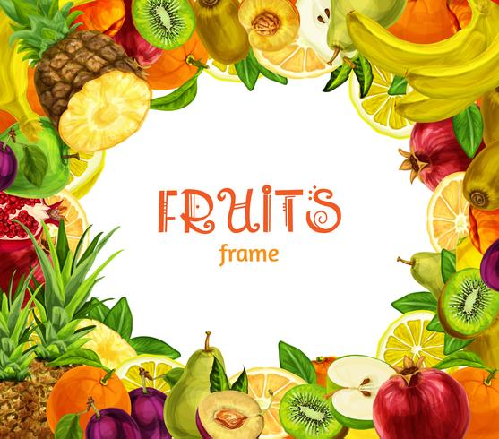 Exotic fruits frame vector