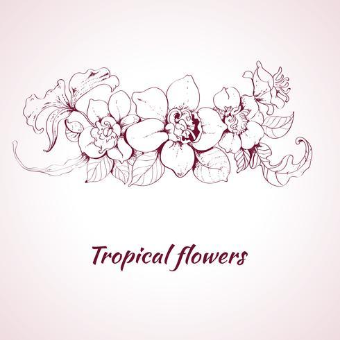 Tropische Blumenskizze