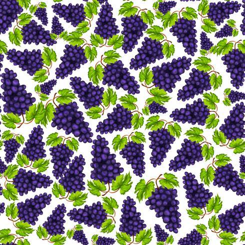 Padrão de frutas de uvas sem emenda
