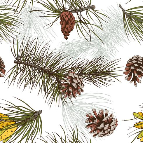 Pine grenar färgat sömlöst mönster