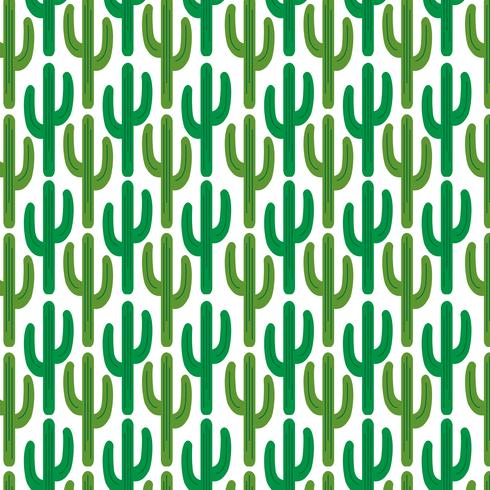 cactus pattern  on white background vector