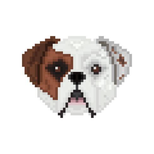Bulldog americano, testa di cane in stile pixel art.