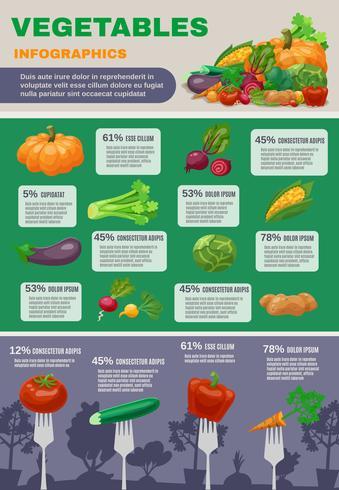 Conjunto de infografía de verduras vector