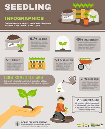 Seedling Infographics Set