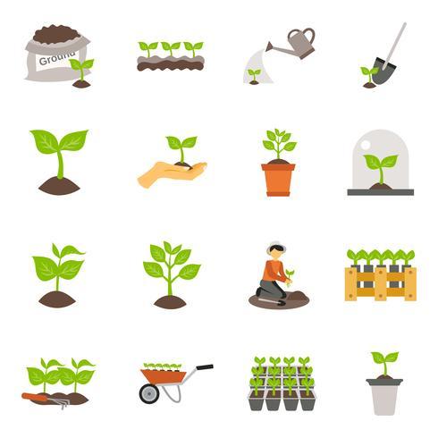 Seedling Flat Icons Set vector