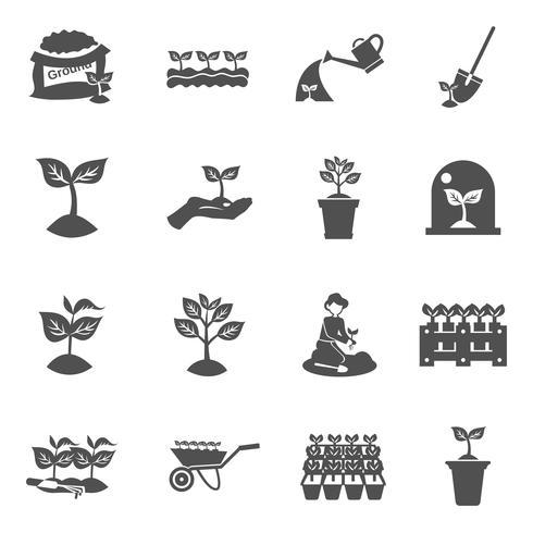 uppsättning av plantor ikoner vektor