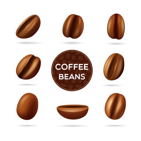 Kaffebönor konceptuppsättning