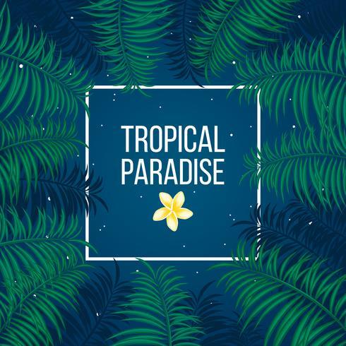 Plantilla de fondo de paraíso tropical noche estrellada vector