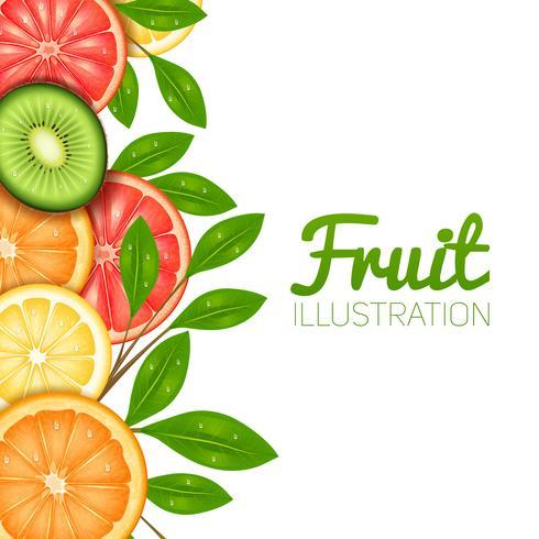 Ilustração de frutas de verão