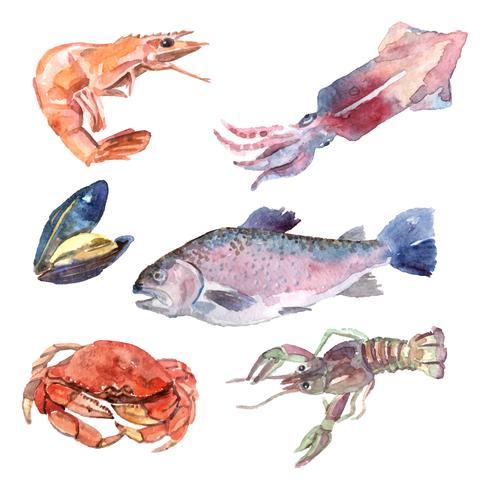 Conjunto de comida do mar aquarela vetor