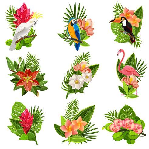 Conjunto de pictogramas de pássaros e flores tropicais