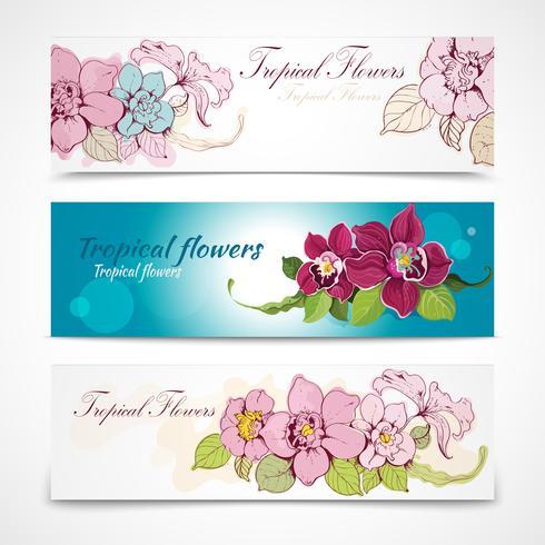 Banners de flores tropicales
