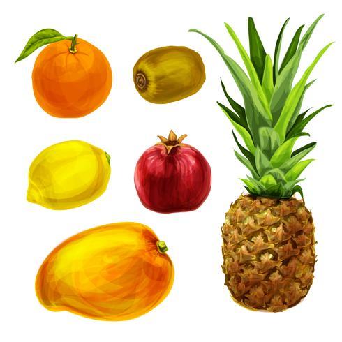 Colección de frutas orgánicas tropicales.