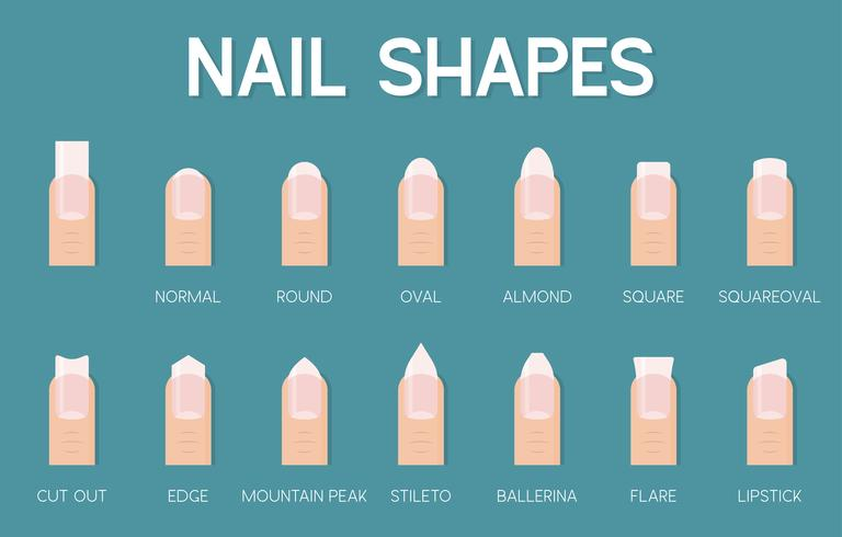 nail shapes for manicure and pedicure icon vector