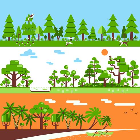 Conifeerachtige bladverliezende tropische bosbanners vector