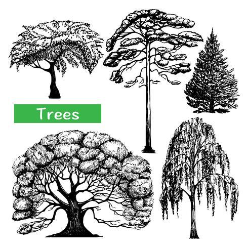 Ensemble d'icônes noires dessinées à la main des arbres vecteur