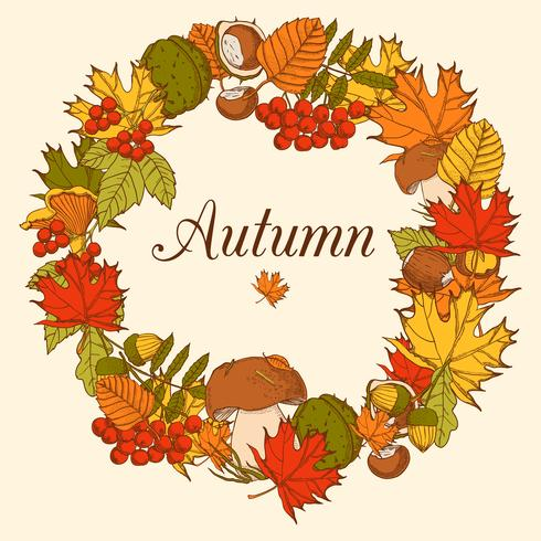 Decorative Color Autumn Frame