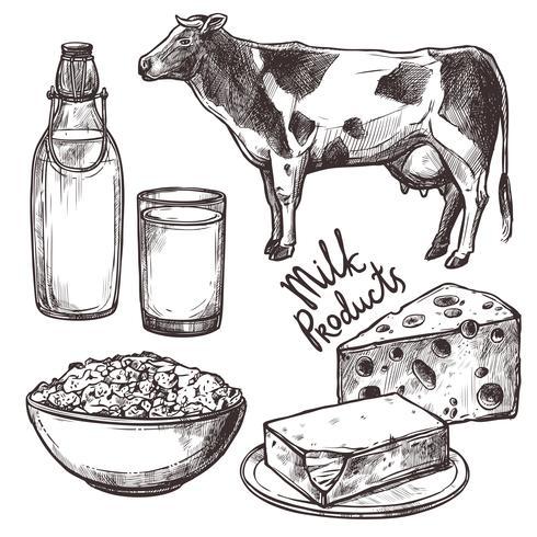 Ensemble de produits laitiers Sketch