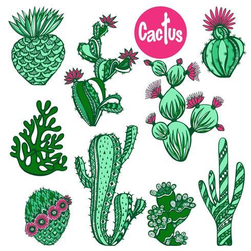 Color cactus set
