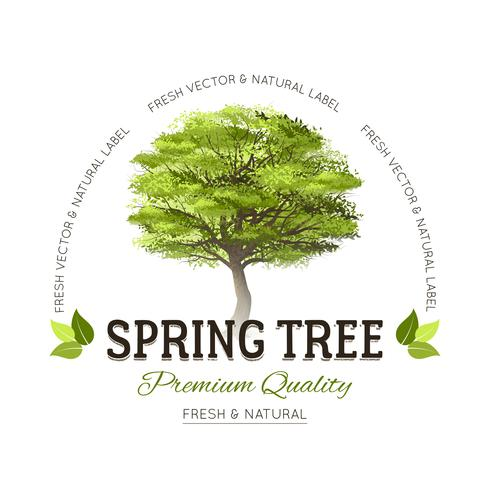 Baum-Typografie-Logo
