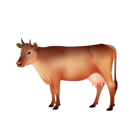 mucca marrone realistico
