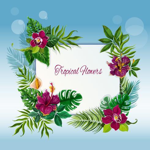 Marco de flores y hojas tropicales.