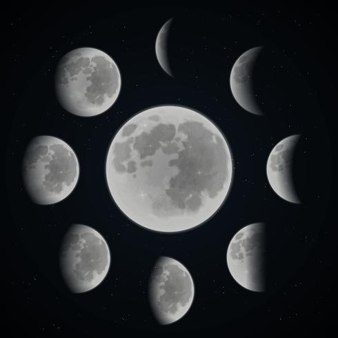 Conjunto de fases da lua vetor