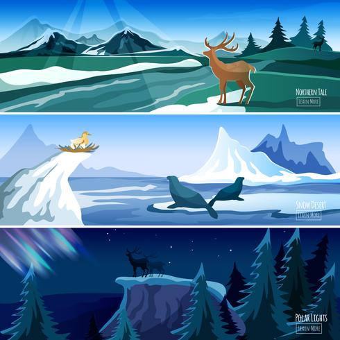 Northern Landscape Flat Banners set
